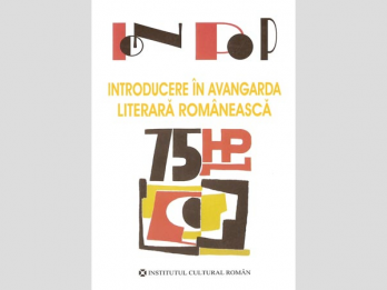 Ion Pop - Introducere in avangarda literara romaneasca, 2007, 304 p